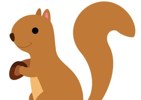 孕晚期胎教故事文字版:松鼠和小兔