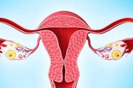 卵巢早衰的女人可以怀孕吗
