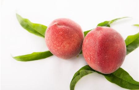 夏天备孕吃什么水果 6种水果好吃又健康!