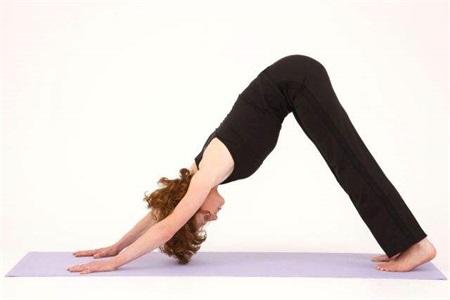 减肥运动太累怎么办?三组瑜伽动作让你轻松变美
