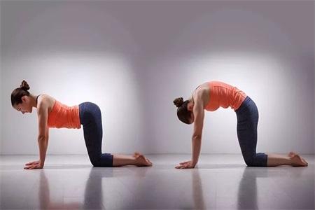 同房姿势108种,女性练习瑜伽可以保养皮肤改善体态