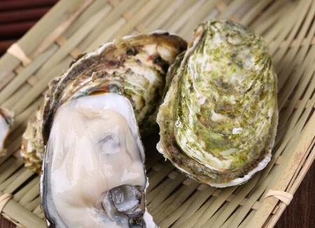 牡蛎和生蚝一样吗 牡蛎和生蚝的区别