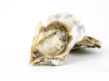 孕妇吃牡蛎的做法