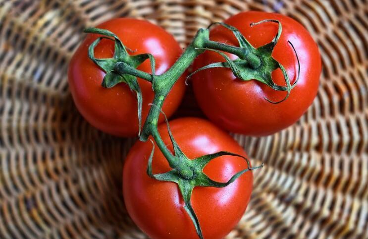 茄红素的功效与作用 十大超强保健功效