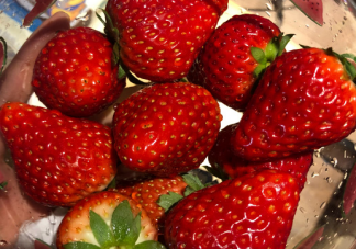 冬天吃草莓晒朋友圈说说 冬天吃草莓幽默搞笑文案