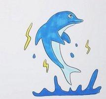 海洋生物海豚简笔画步骤图解