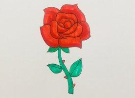 盛开的玫瑰花简笔画怎么画步骤图解